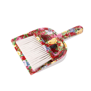 Broom Dustpan 13